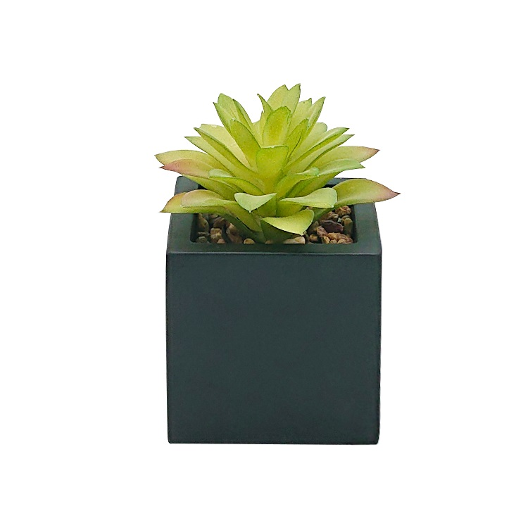 Cheap home decorative artificial succulent bonsai plant artificial plants wholesale artificial potted plants in cement pot