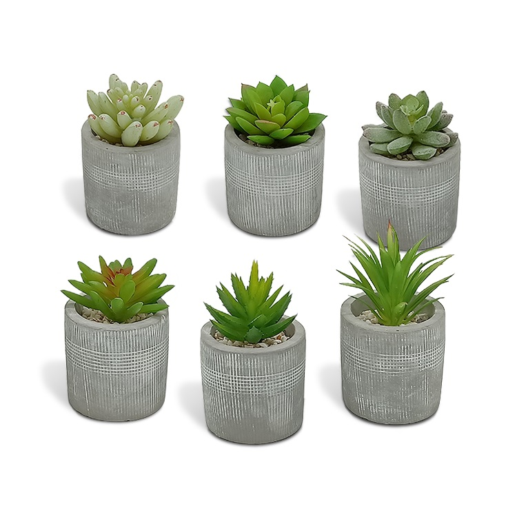New Artificial Succulent set, Assorted Decorative Faux Succulent,Potted succulents with mini cement Pot artificial succulent