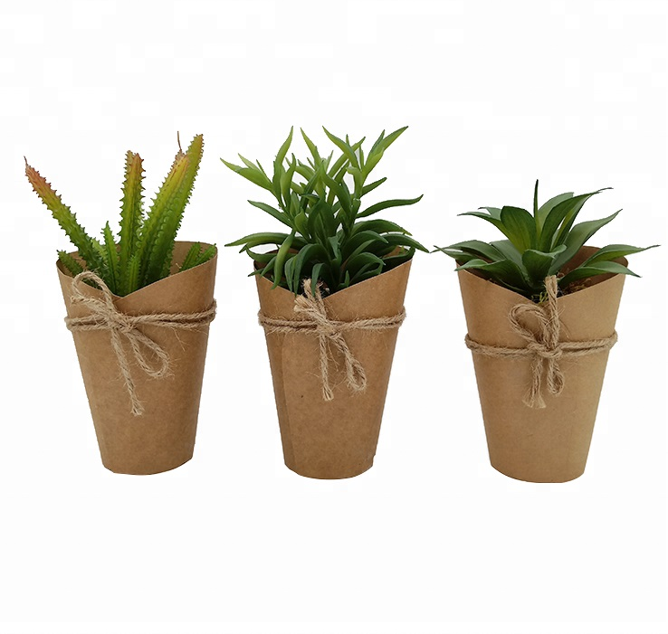Wholesale succulent artificial plant in paper cup decorative artificial plant pot 1 buyer